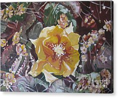 Acrylic Print featuring the painting Cholla Flowers by Julie Todd-Cundiff