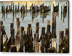 Acrylic Print featuring the photograph Choosing Sides by Jon Exley