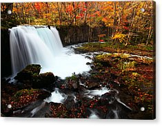 Acrylic Print featuring the photograph Choushi - Ootaki Waterfall In Autumn by Brad Brizek
