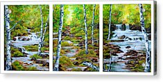 Chris And Willy's Falls Acrylic Print by Jessica Tookey