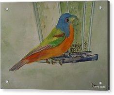Chris' Birdfeeder Acrylic Print by Betty Pimm