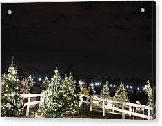Christmas At The Ellipse - Washington Dc - 01136 Acrylic Print by DC Photographer