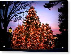 Acrylic Print featuring the photograph Christmas At The New York Botanical Garden by Aurelio Zucco