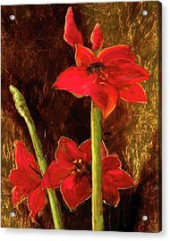 Acrylic Print featuring the painting Christmas Beauty by Vic  Mastis
