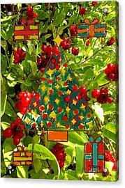 Christmas Berries Acrylic Print by Patrick J Murphy