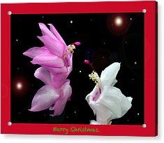 Christmas Cactus Fantasy Acrylic Print