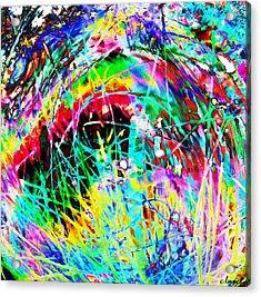 Christmas Acrylic Print by Carol Lynch