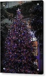 Christmas Display - Us Botanic Garden - 011357 Acrylic Print