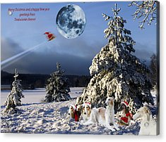 Christmas Greetings From Borzoi Sight-hounds Acrylic Print by Christian Lagereek