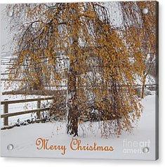 Christmas Is Orange Acrylic Print