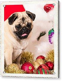 Christmas Morning Acrylic Print by Edward Fielding