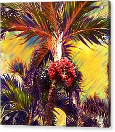 Christmas Palm Tree In Yellow - Square Acrylic Print