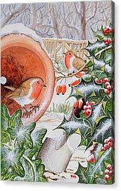 Christmas Robins Acrylic Print by Tony Todd