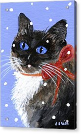 Acrylic Print featuring the painting Christmas Siamese by Jamie Frier