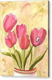 Tulip Time Acrylic Print by Mickey Krause