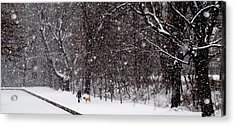 Acrylic Print featuring the photograph Christmas Walk by Jacqueline M Lewis