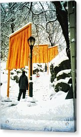 Christo - The Gates - Project For Central Park In Snow Acrylic Print by Nishanth Gopinathan
