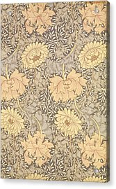Chrysanthemum Acrylic Print by William Morris