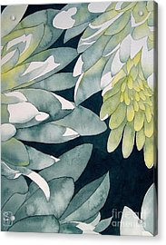 Chrysanthemums Acrylic Print by Robert Hooper
