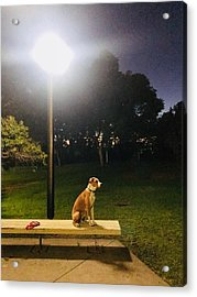 Chuck Bench Occidental College Acrylic Print by Ben LaMarca
