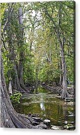 Cibolo Creek - 2 Acrylic Print