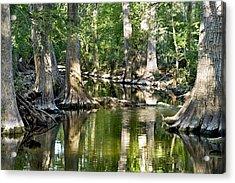 Cibolo Creek - 3 Acrylic Print