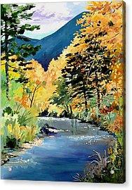 Cimarron Canyon Acrylic Print