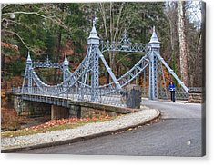 Cinderella Bridge Acrylic Print by Guy Whiteley