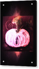 Cinderella's Pumpkin  Acrylic Print