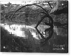 Acrylic Print featuring the photograph Circle And Heart by Cynthia Lagoudakis