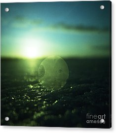 Circle In Square - Medium Format Analog Hasselblad Film Photo Acrylic Print by Edward Olive