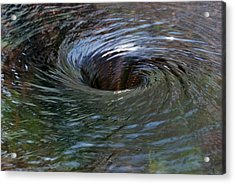 Acrylic Print featuring the photograph Circling by Wendy Wilton