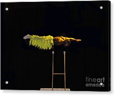 Cirque 2 Acrylic Print by Cindy Lee Longhini