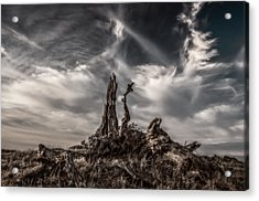 Cirrus Clouds At Sunset  Acrylic Print by Marc Crumpler