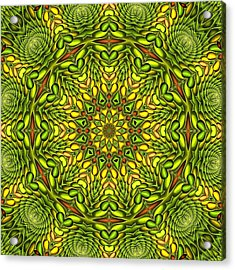 Citrus K12-33 Acrylic Print by Doug Morgan