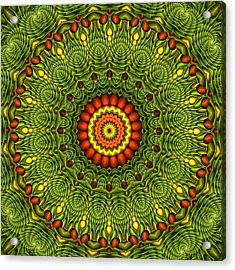 Citrus K20-34 Acrylic Print by Doug Morgan