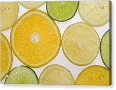 Citrus Slices Acrylic Print by Kelly Redinger