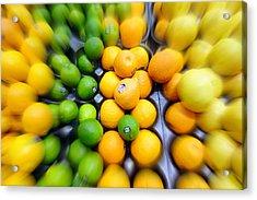 Citrus Acrylic Print by Valentino Visentini