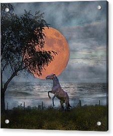 Claiming The Moon Acrylic Print by Betsy Knapp