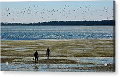 Clammers Acrylic Print by Mamie Gunning