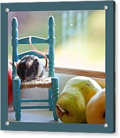 Clara's Favorite Chair Acrylic Print by Theresa Tahara