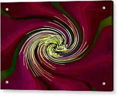 Acrylic Print featuring the photograph Claret Red Swirl Clematis by Debbie Oppermann