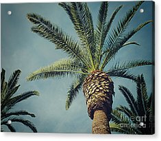 Acrylic Print featuring the photograph Classic Palms2 by Meghan at FireBonnet Art