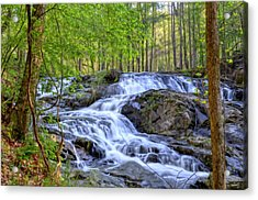 Clay Creek Falls Acrylic Print by Bob Jackson