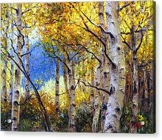 Clear Skies Acrylic Print by Bill Inman