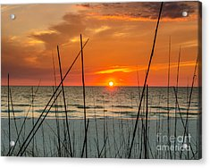 Clearwater Sunset 2 Acrylic Print by Mike Ste Marie