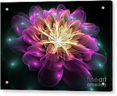 Clematis Magica Acrylic Print
