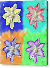 Clematis Osmosis Three Acrylic Print