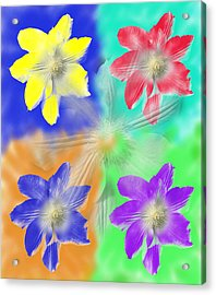 Clematis Osmosis Two Acrylic Print