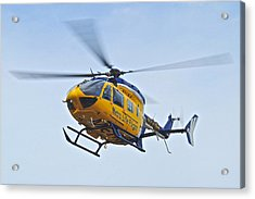 Cleveland Metro Life Flight Acrylic Print by Frozen in Time Fine Art Photography